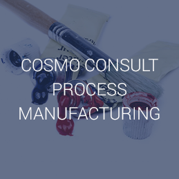 COSMO CONSULT PROCESS MANUFACTURING