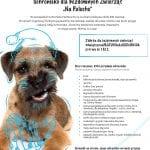 Plakat-akcja-charytatywna-IT.integro-shareIT